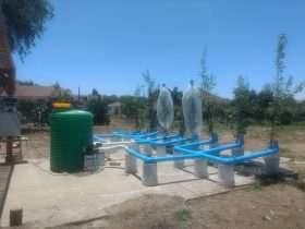 Evaluación Intercambio gaseoso en planta completa Nogal